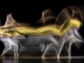 Motion-Sculpture-Danse-9581.jpg