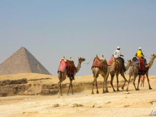 Cairo – Le Caire-8