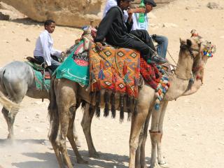 Cairo – Le Caire-9