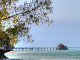 Zanzibar-26