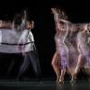 Danse Sportive-13