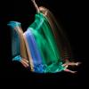 Motion-Sculpture-Danse-B9844–