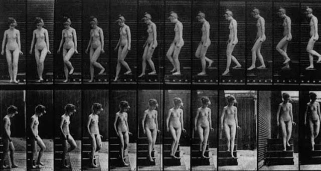 Chronophotographies d'Eadweard MUYBRIDGE, Nu-descendant un escalier,1887