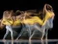 Motion-Sculpture-Danse-frame-.jpg