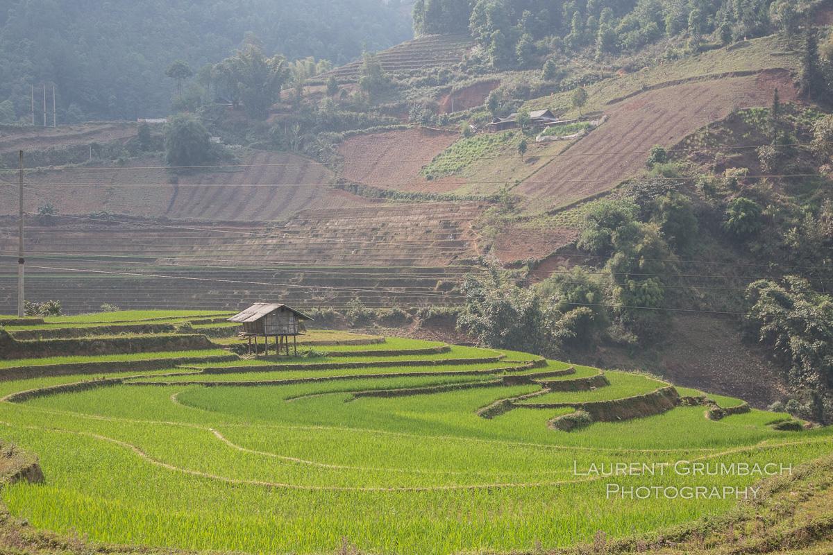 Vietnam 2018 - 12