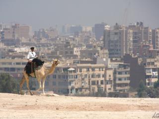Cairo – Le Caire-12